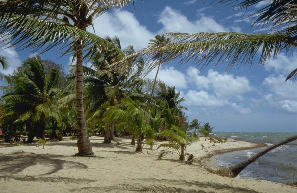 Placencia Penisula | Strand in Maya Beach | © Karibik Inside