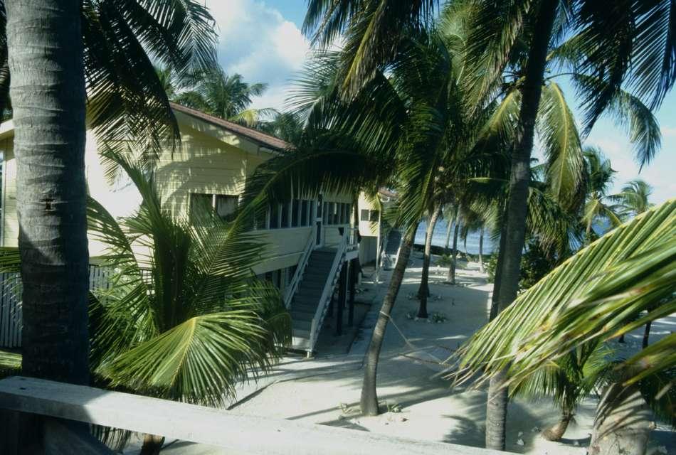 Turneffe Islands Resort | Tauchparadies am Strand | © Karibik Inside