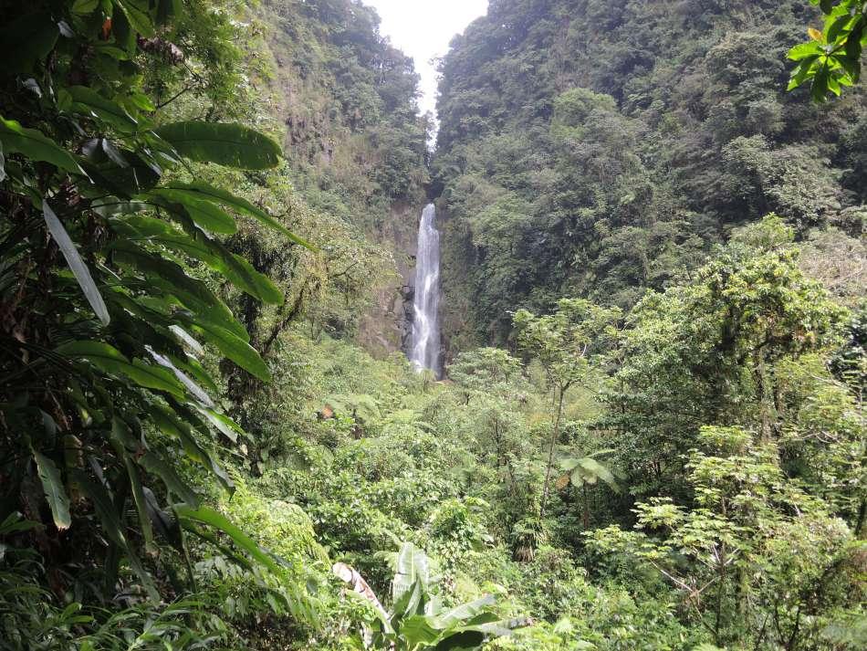Dominica | Sari Sari Wasserfall | © Günter Klos