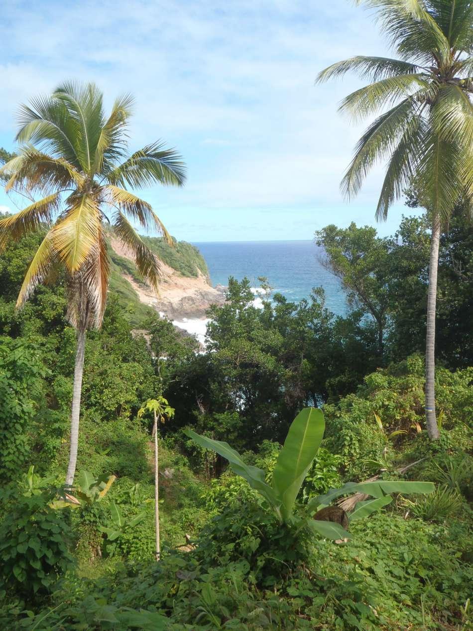 Dominica   Unterwegs auf dem WNT - Segment6   © Tamarind Tree Hotel