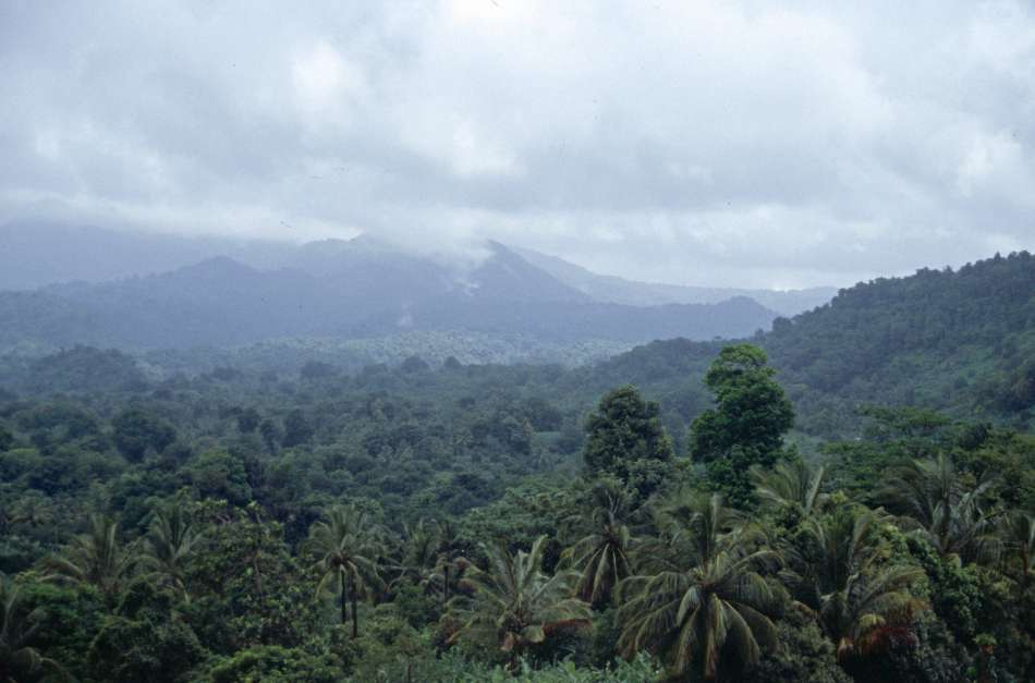 Dominica   Unterwegs auf dem WNT - Segment9   © Karibik Inside