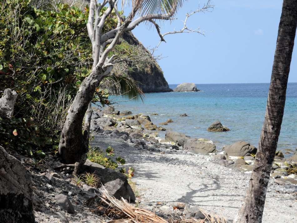 Dominica | Unterwegs auf dem WNT - Segment14 | © Günter Klos