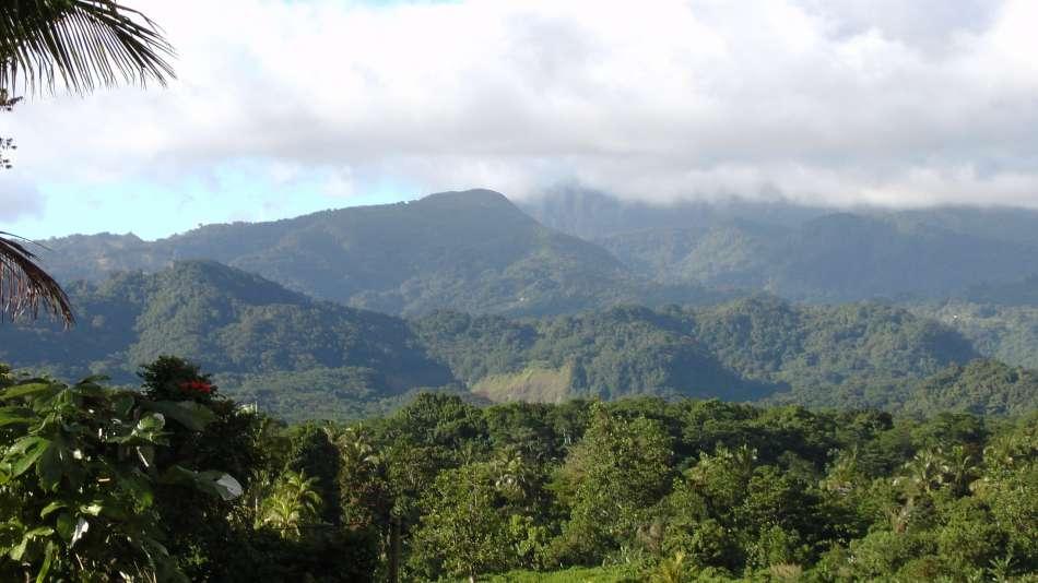 Dominica   Auf dem Perdu Temps Pfad   © Günter Klos