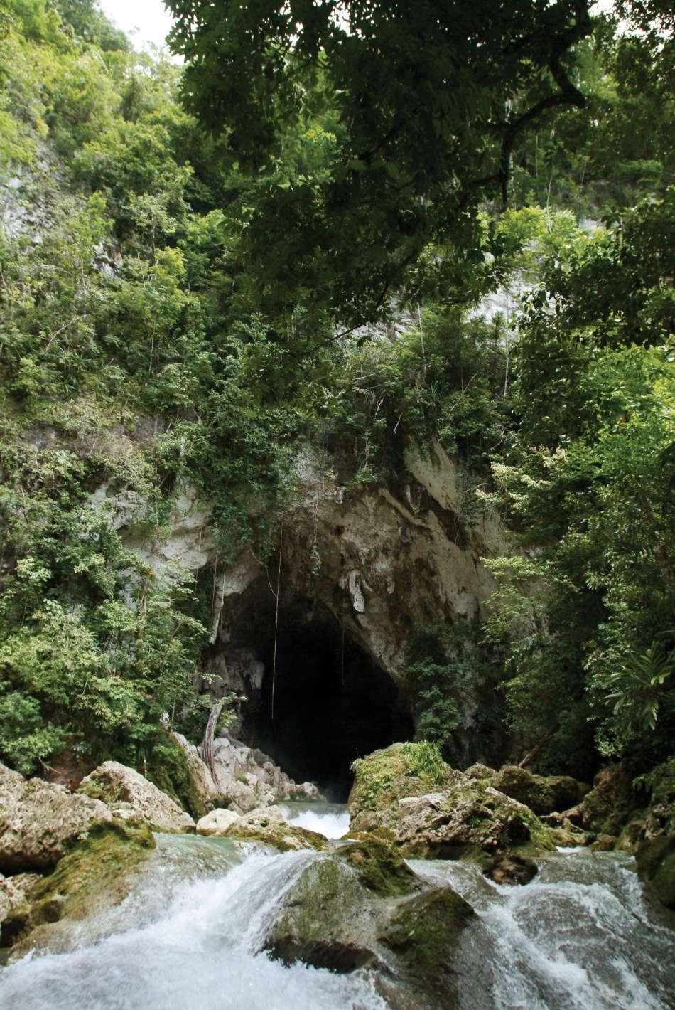Hokeb Ha - Blue Creek Cave | Höhleneingang | © Turtle Inn