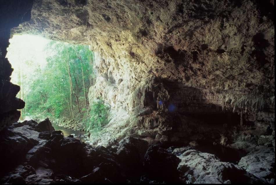 Rio Frio Cave | Das riesige Höhlen-Tor | © Blancaneaux Lodge