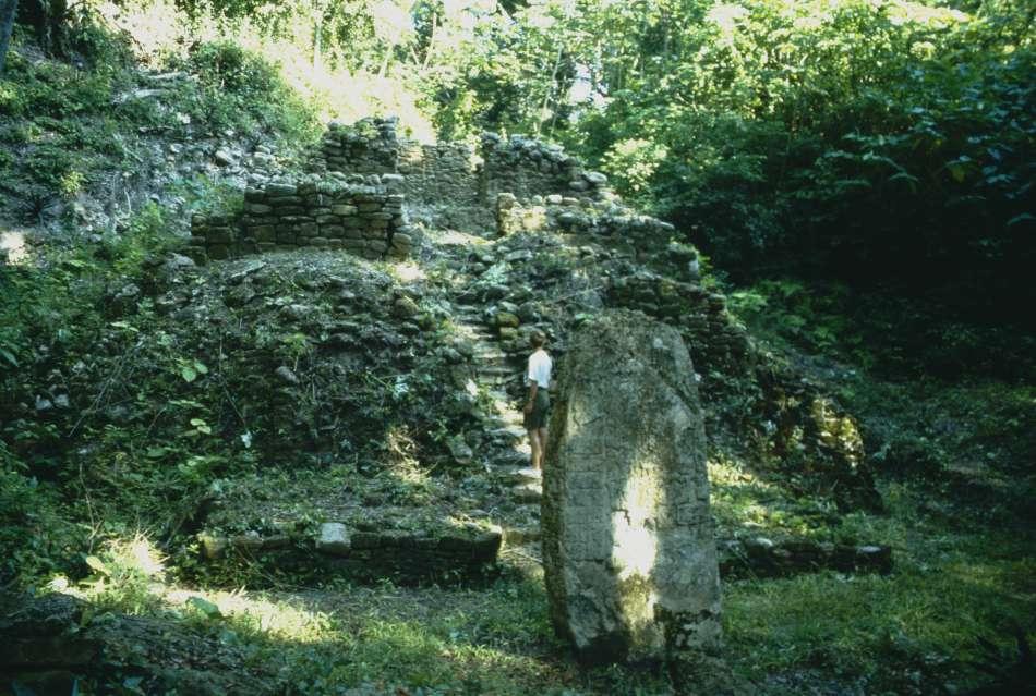 La Milpa | Steele vor einer Tempelpyramide an der großen Plaza (1997) | © Karibik Inside