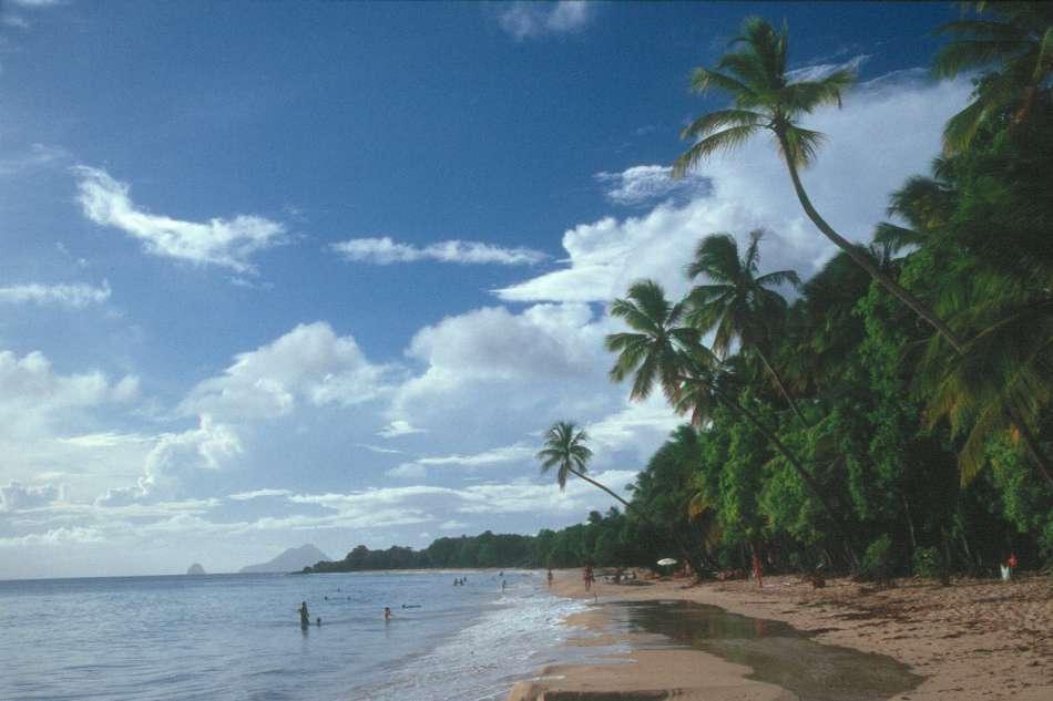 Martinique   Grande Anse des Salines an der Südspitze der Insel   © Karibik Inside